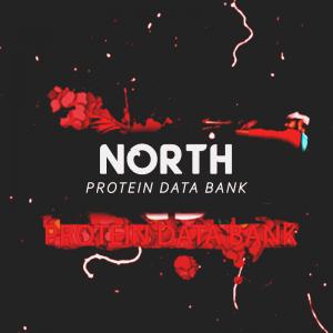 Northsamurai
